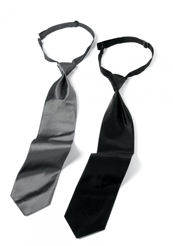 Iridescent Long Tie