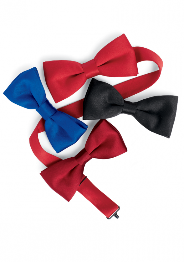 Satin Banded Bow Tie