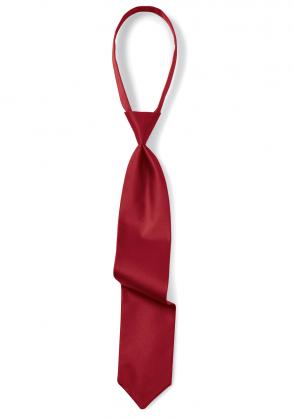 Regular Cinch Satin Necktie in Claret